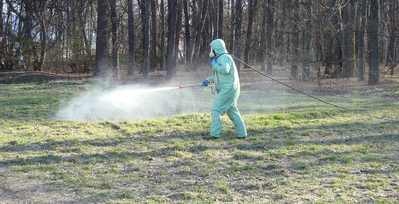 Травить клещей в Костромской области будут на новых территориях