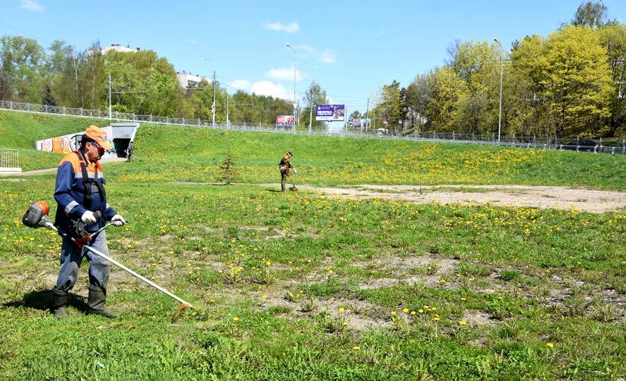 В парках Костромы появилась первая скошенная трава