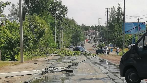 Ветер на северо-востоке Костромской уронил столбы и деревья