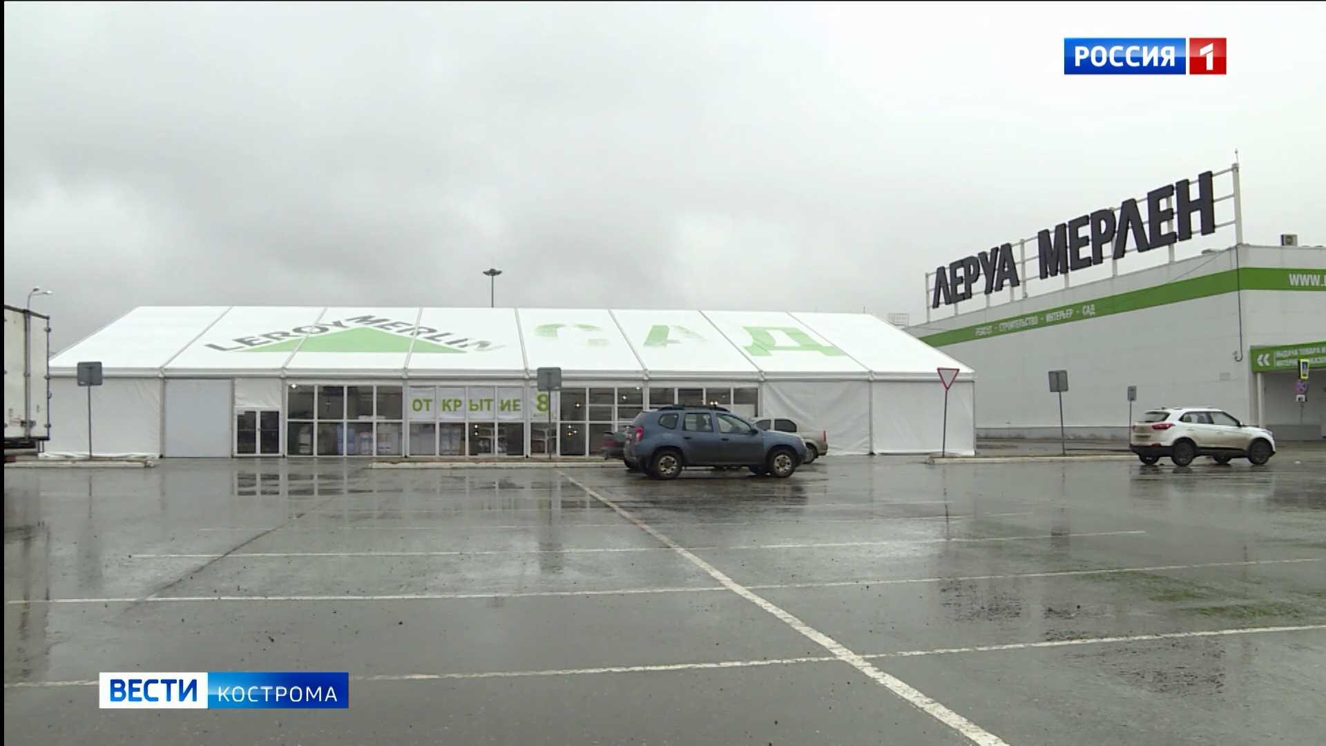 Дачникам на радость: «Леруа Мерлен» открыл в Костроме большой Садовый шатер