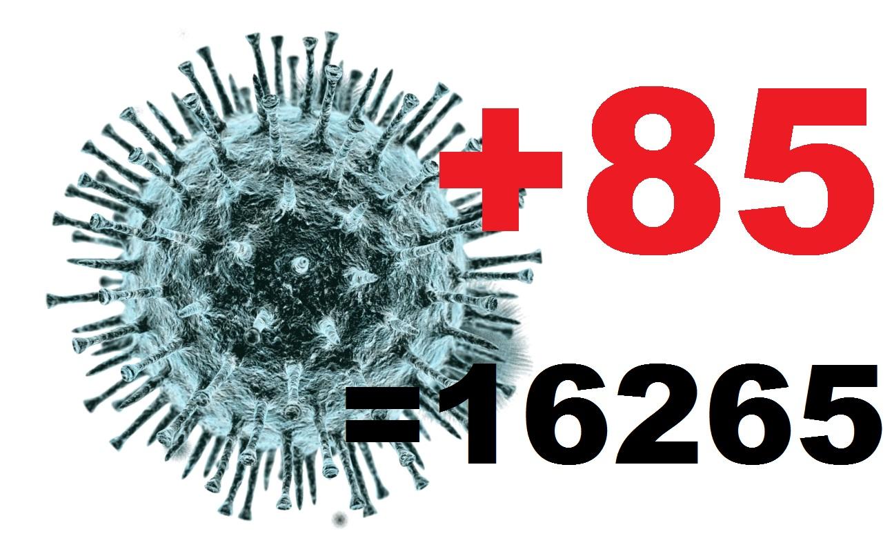 В Костромской области за сутки коронавирус подтвержден у 85 человек