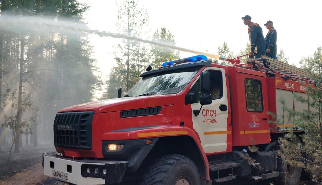 Огнеборцы отвоевали ещё 30 гектаров у пожара в кологривских лесах