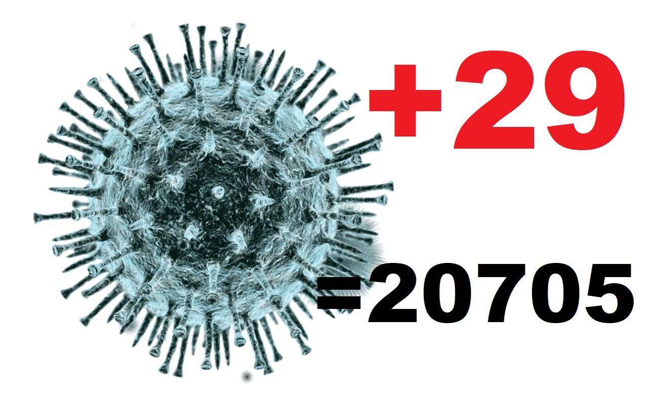 Коронавирус в Костромской области за сутки диагностирован еще у 29 человек
