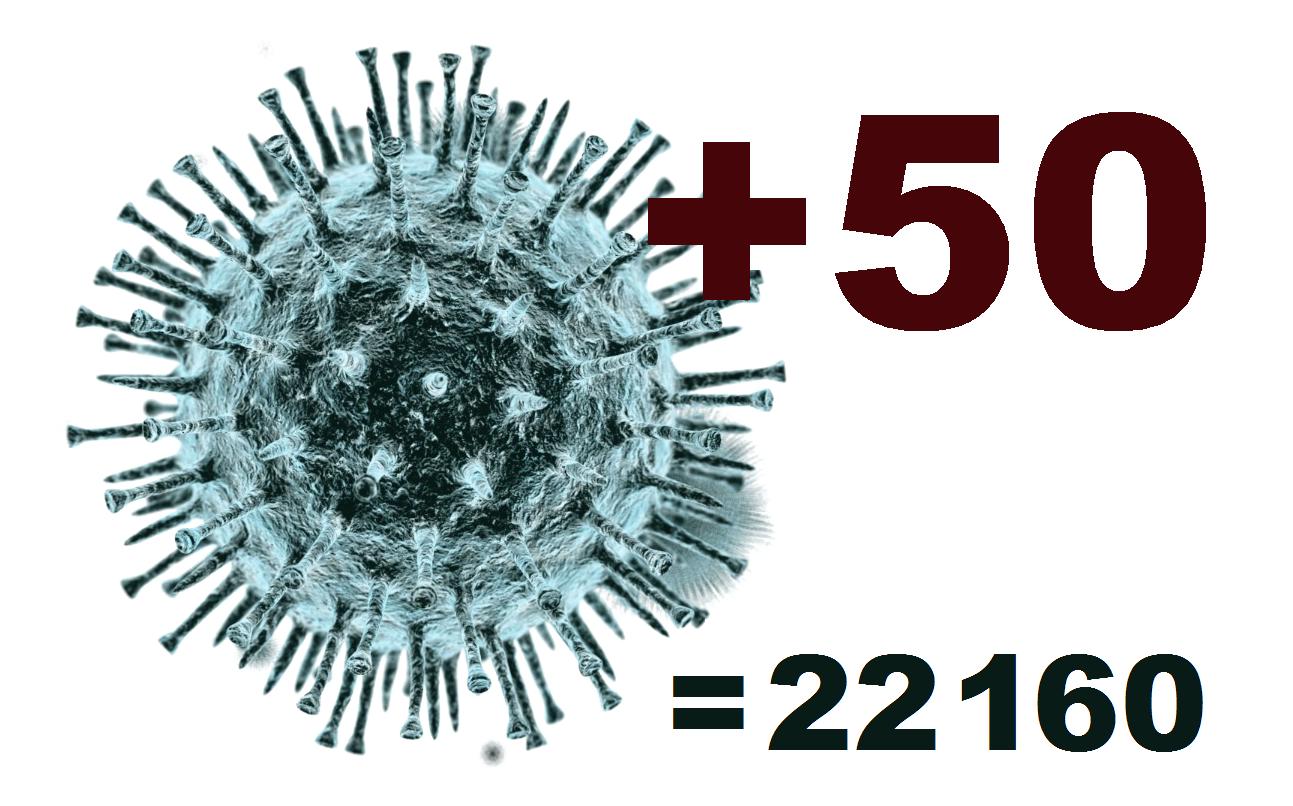 За сутки в Костромской области коронавирус диагностирован у 50 человек
