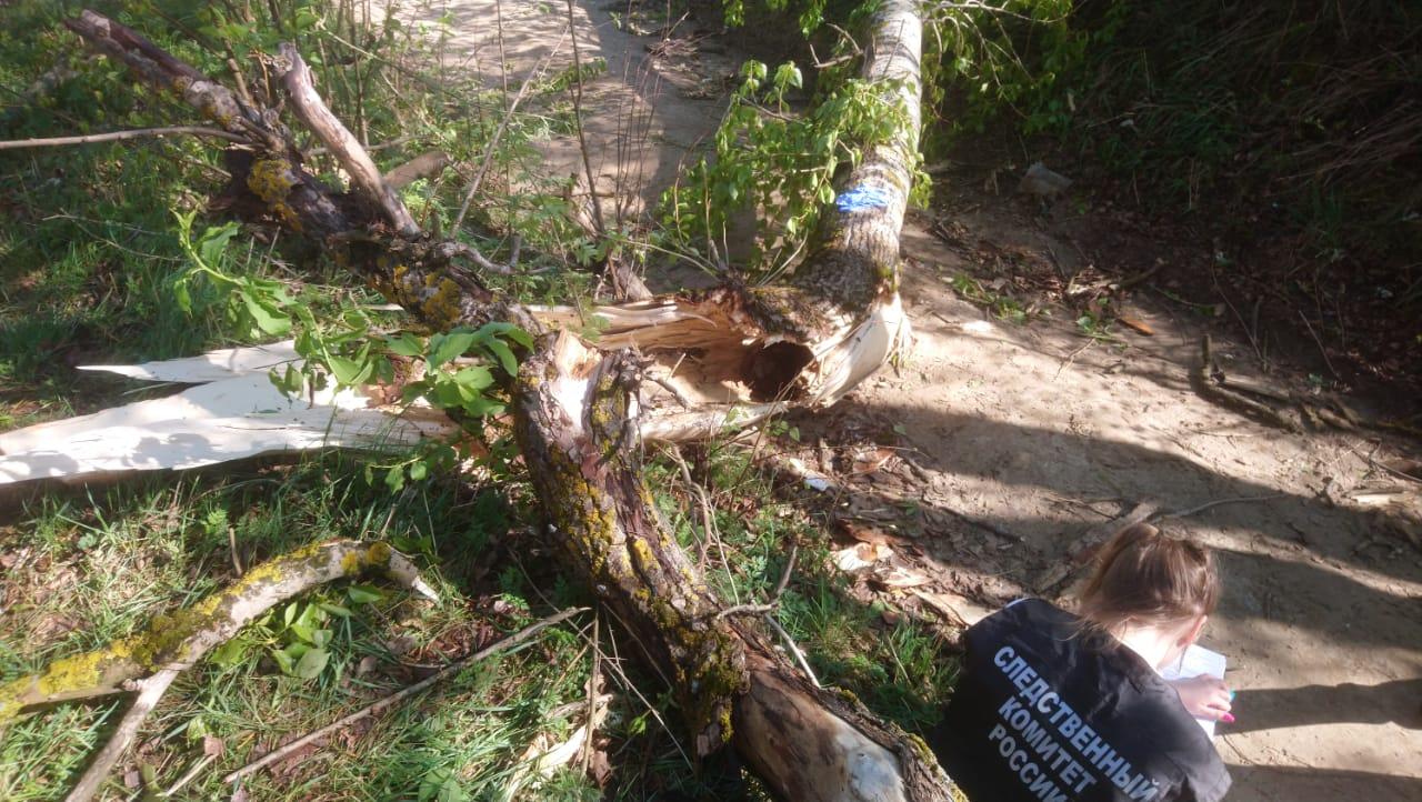 По факту гибели подростка в Костромской области возбуждено уголовное дело