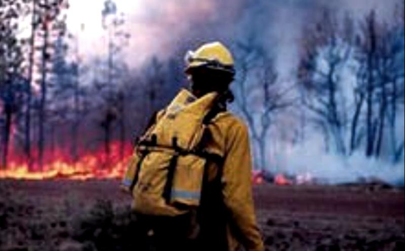 Наивысший класс пожарной опасности сохраняется в Костромской области