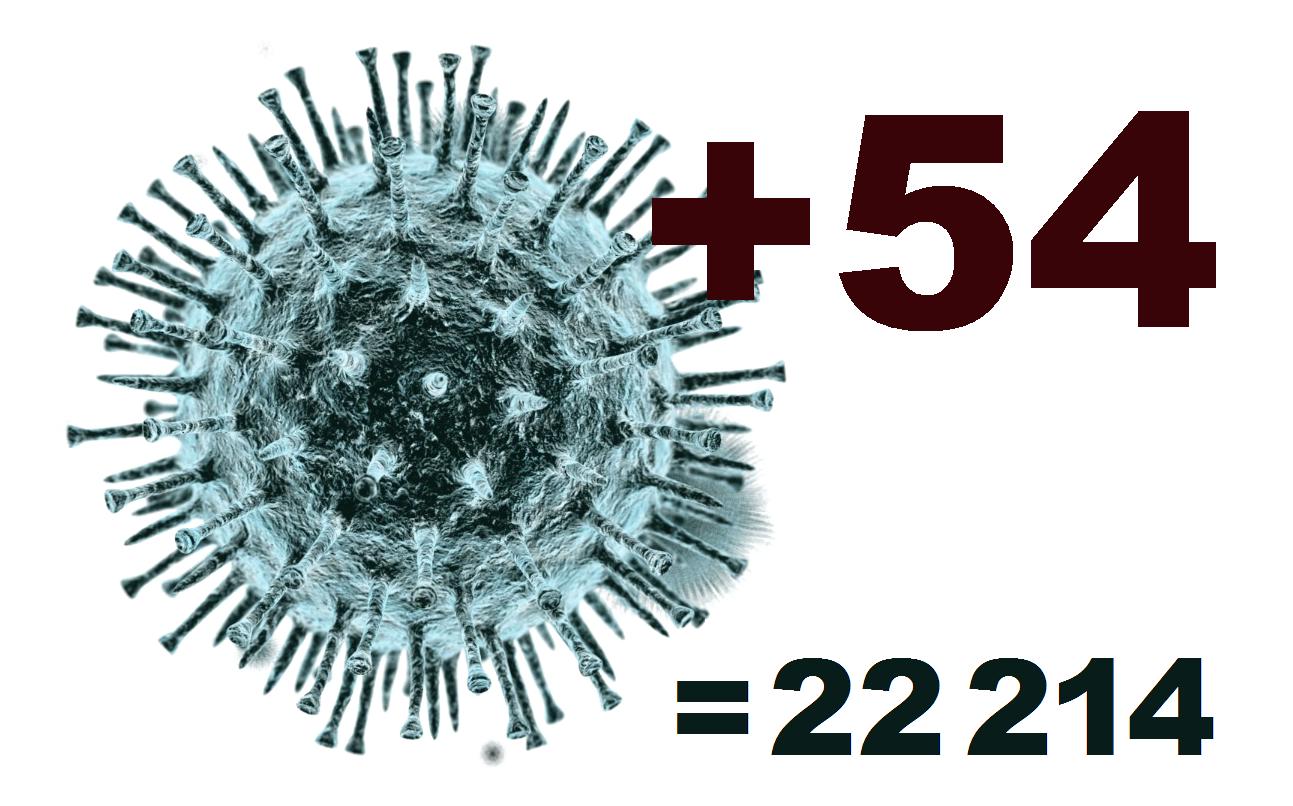 В Костромской области за сутки выявлено 54 заболевших коронавирусом