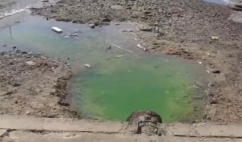 В Волгу в Костроме стекает зеленая вода
