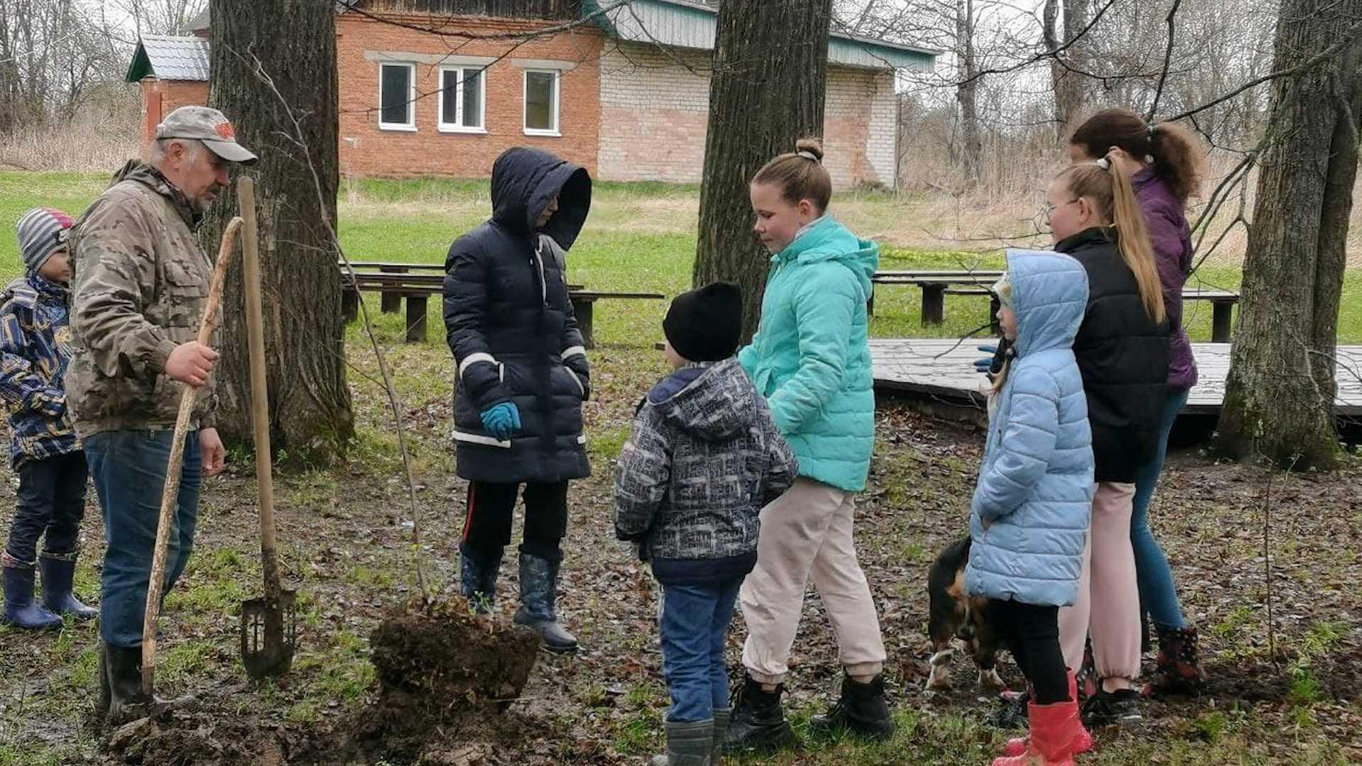 Липовую рощу под Костромой помогли посадить школьники и детсадовцы