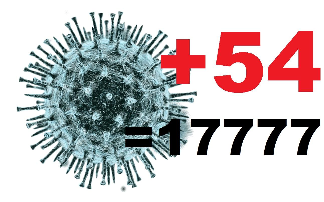 Коронавирусная инфекция диагностирована за сутки у 54 жителей Костромской области