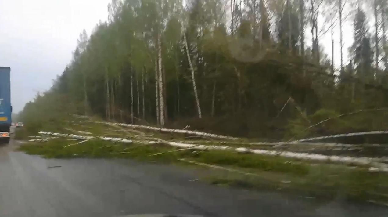 Сергей Ситников выехал в пострадавшие от стихии районы Костромской области