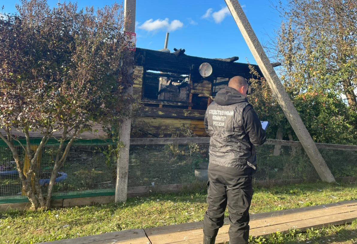 На пожаре в Костромской области погибла женщина