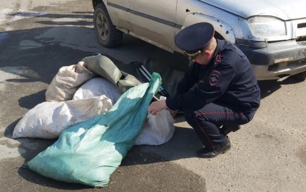 Полицейский патруль выловил браконьеров в костромской глубинке