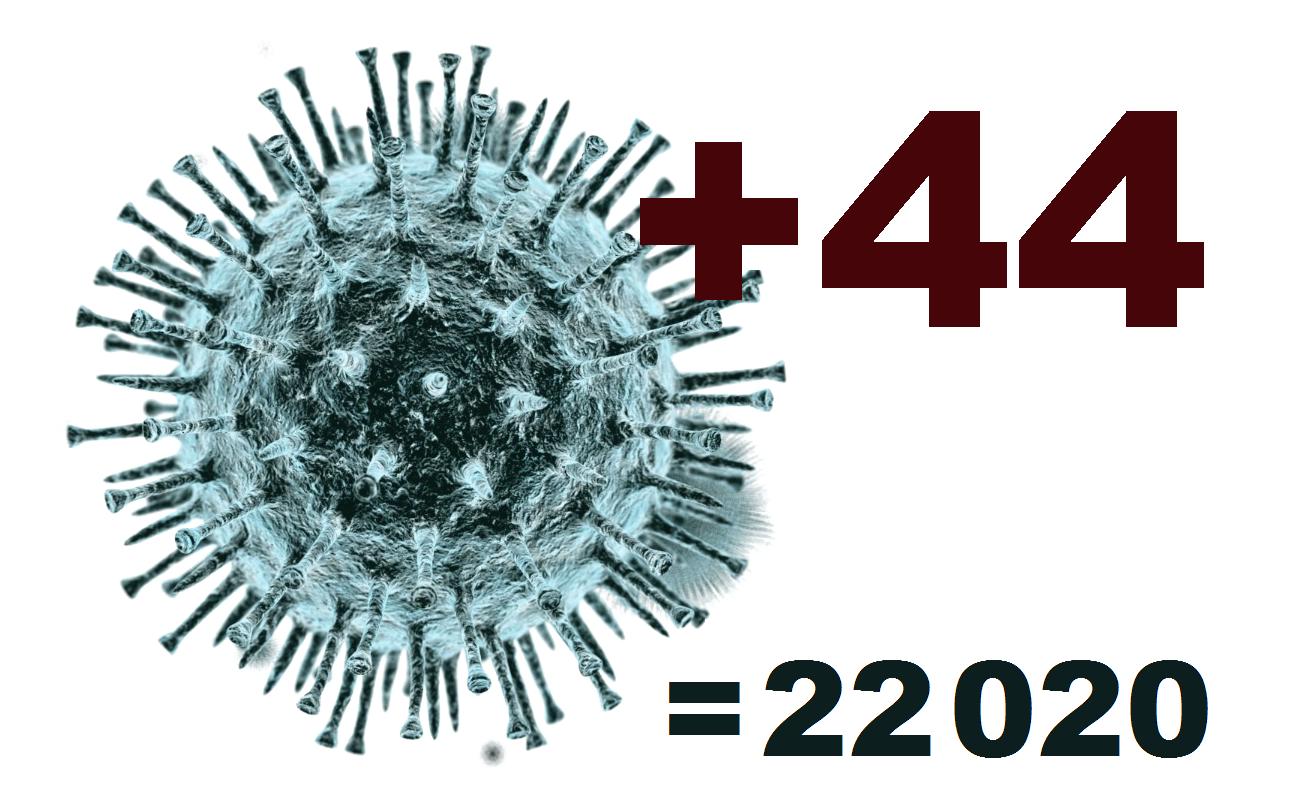 За сутки в Костромской области коронавирус выявлен у 44 человек