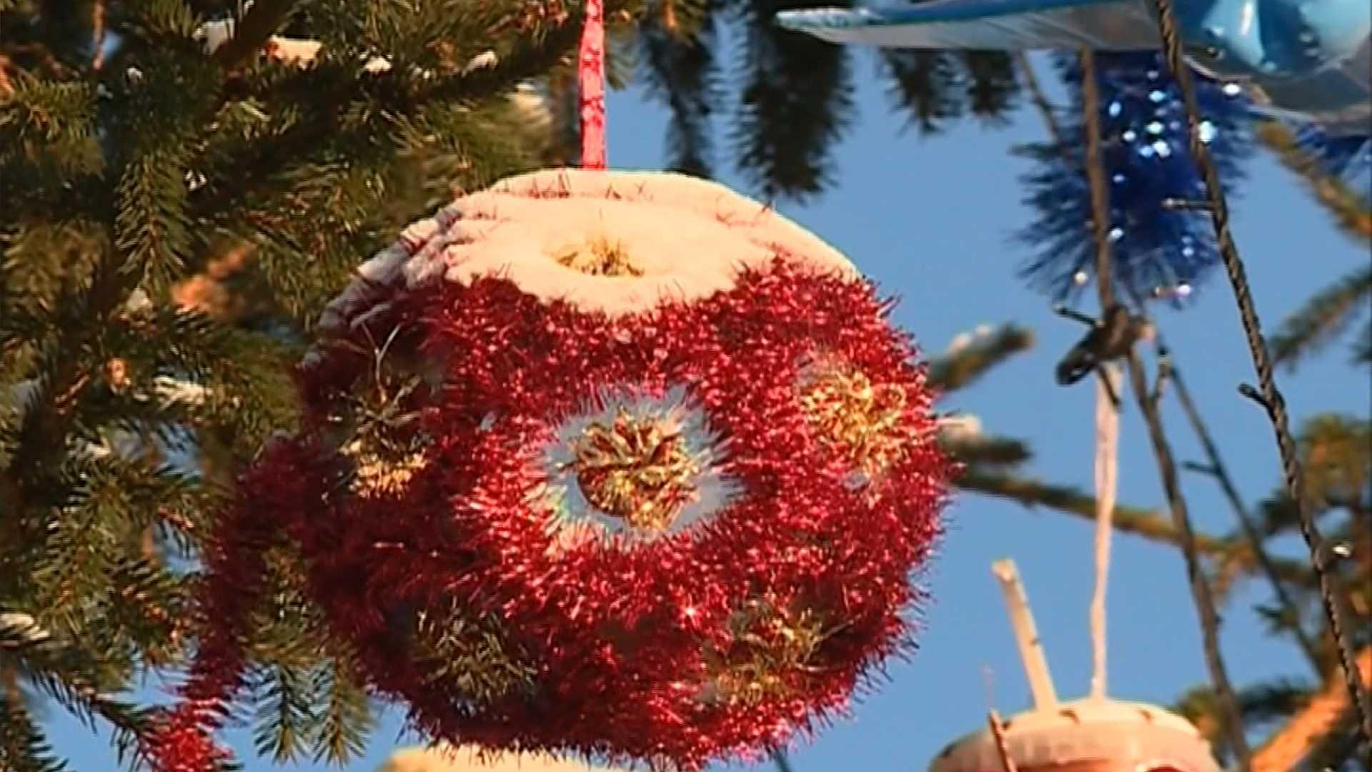Главную елку костромского райцентра украсят по-семейному