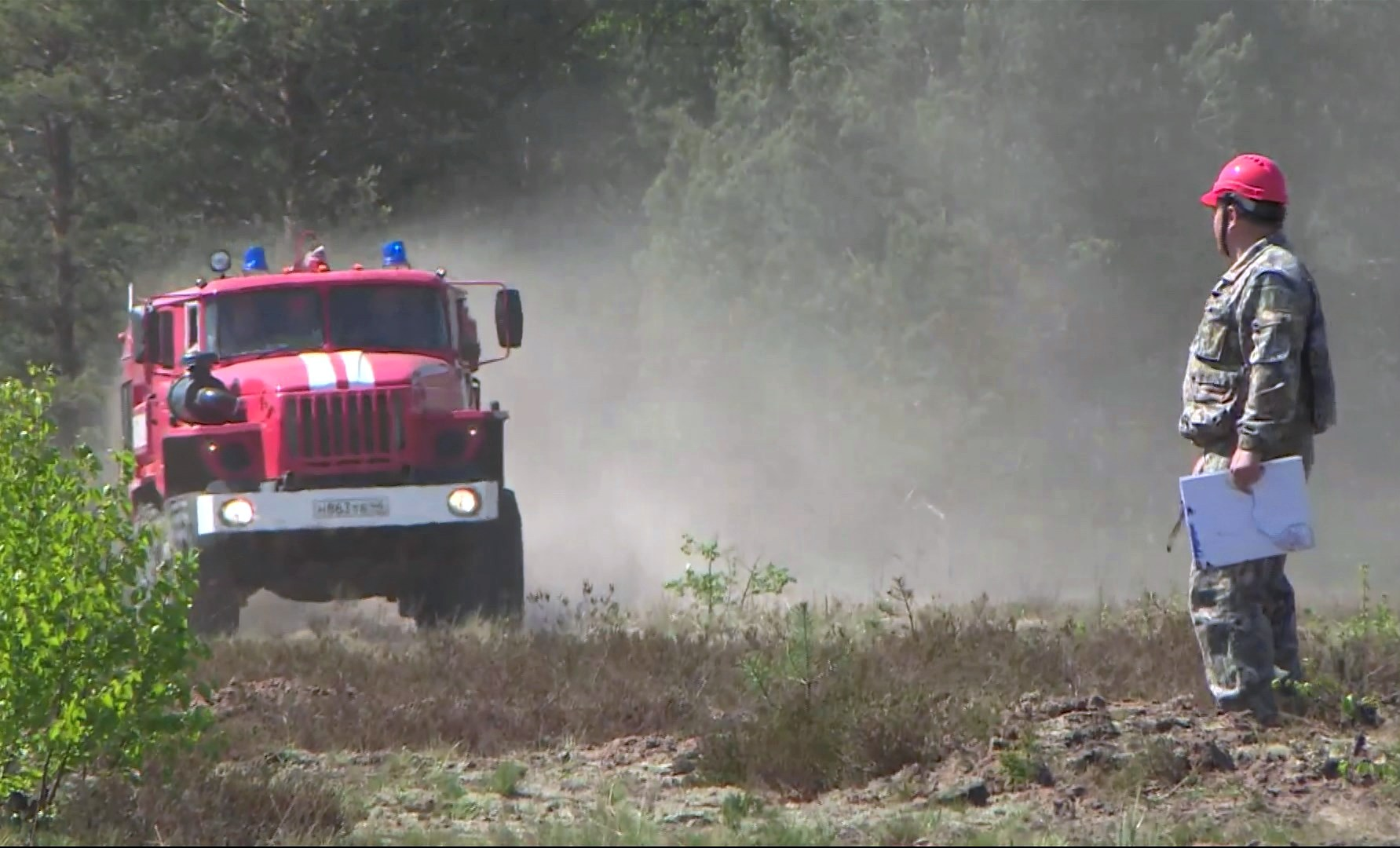 В районах Костромской области горят десятки гектаров леса