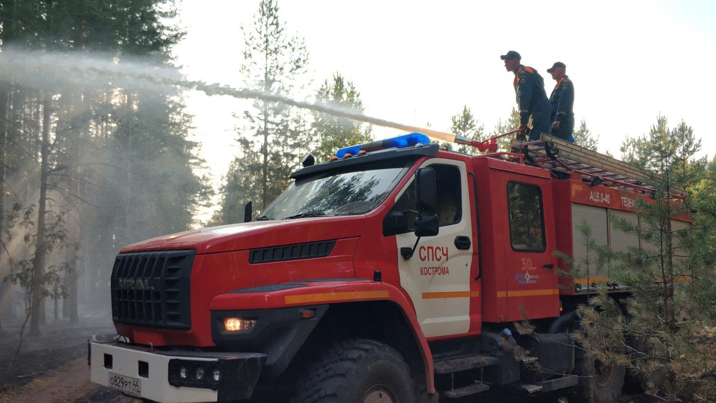 На борьбу с пожаром в Кологривском районе Костромской области направлены новые силы