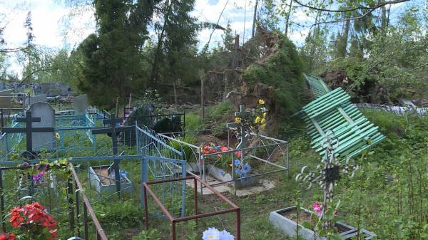 Жители костромского райцентра сообща расчистили кладбище