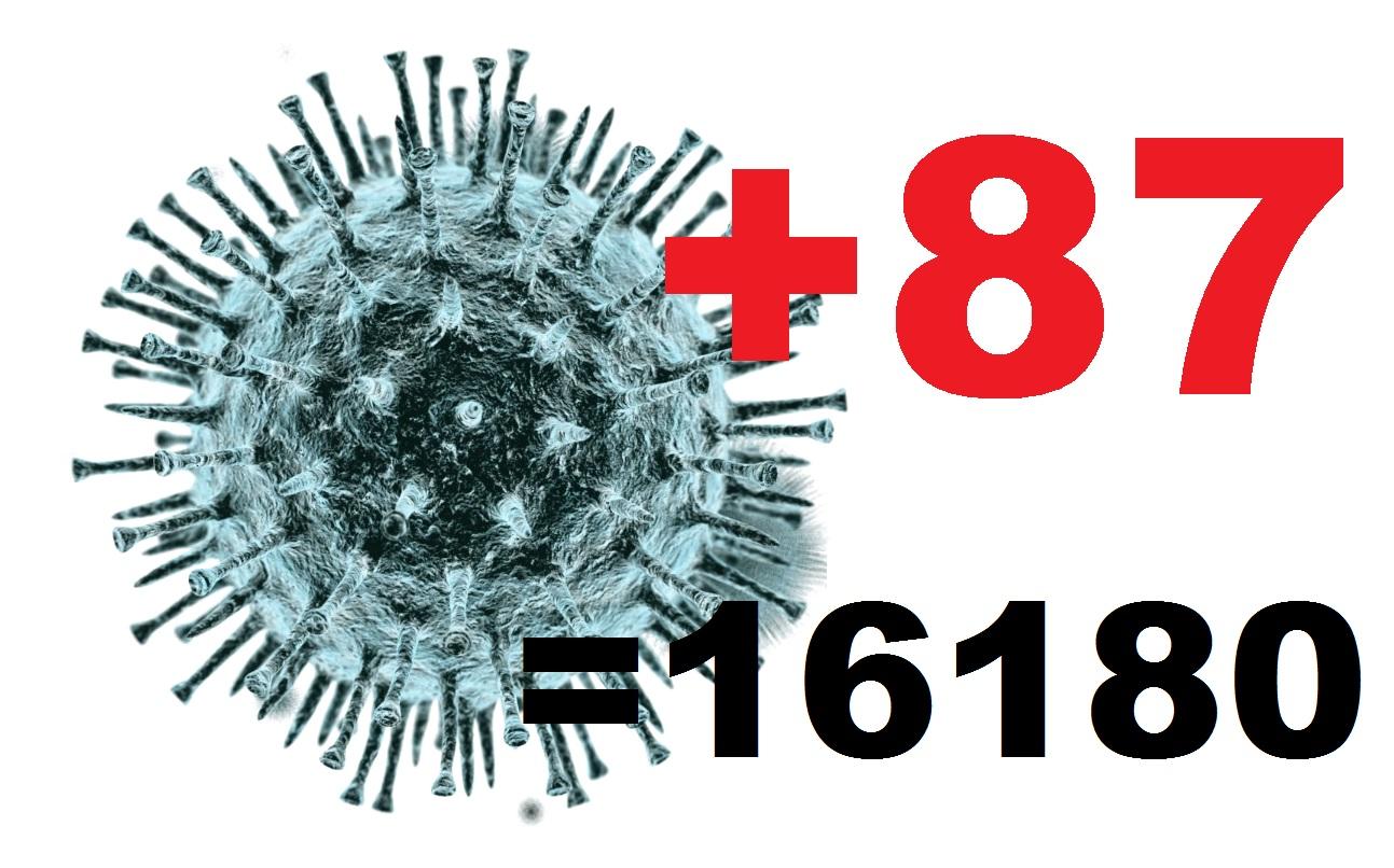 Еще у 87 жителей Костромской области подтвержден коронавирус