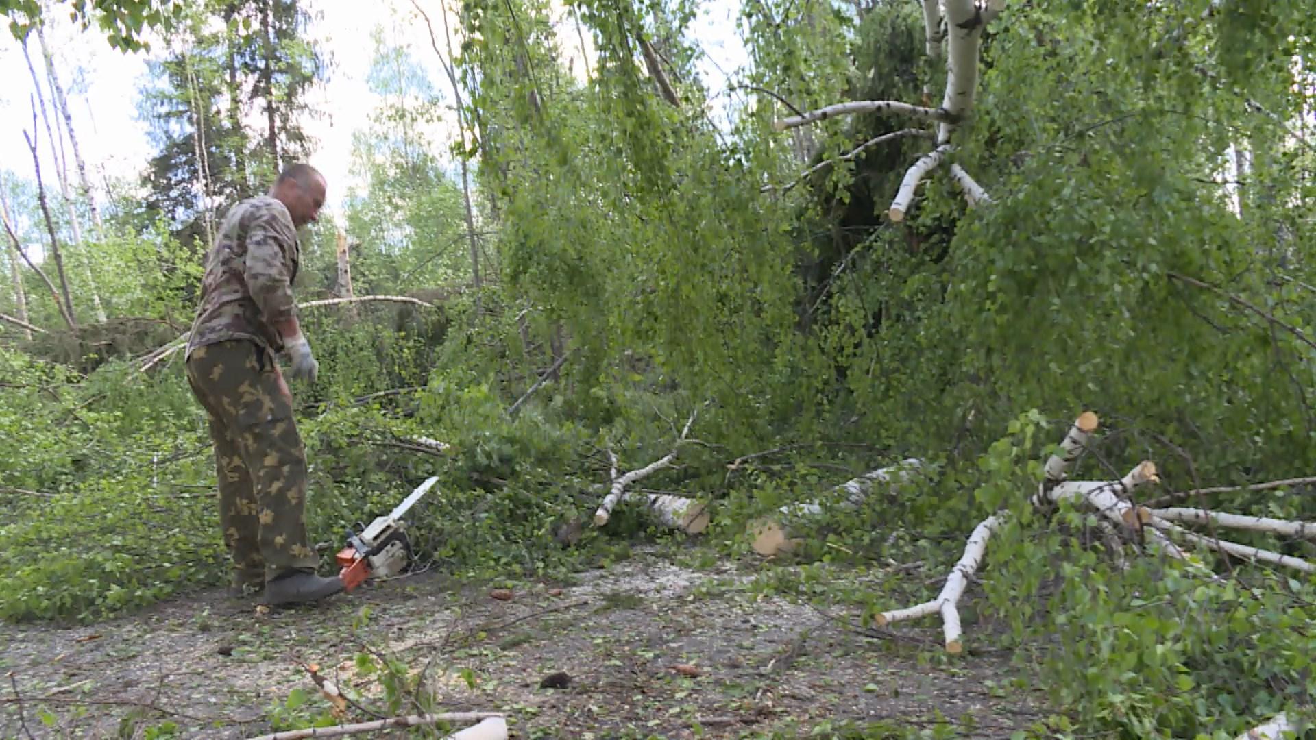 Последствия весеннего урагана в Костромской области устраняют до сих пор