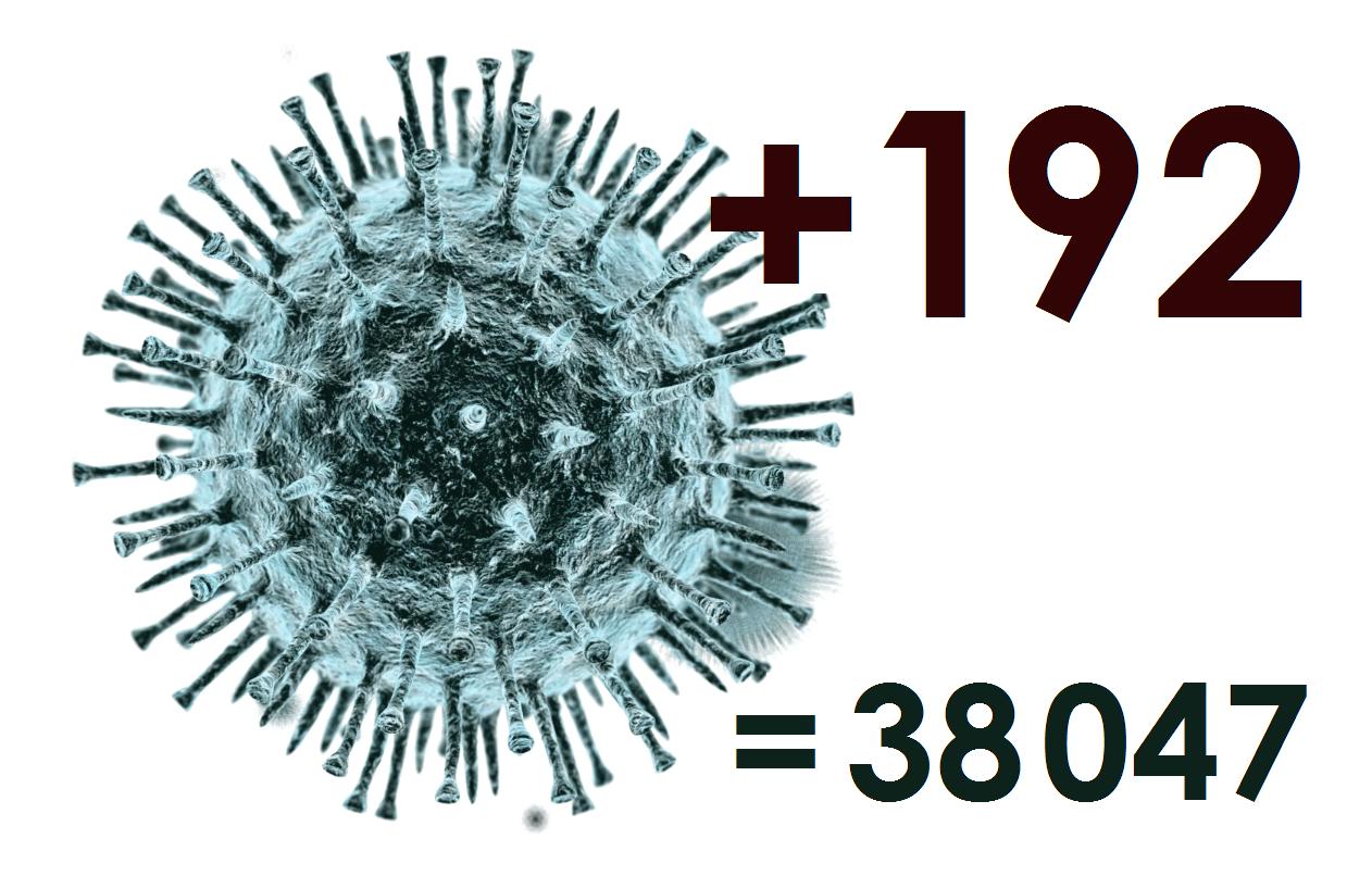 За сутки диагноз «коронавирус» в Костромской области поставлен 192 больным