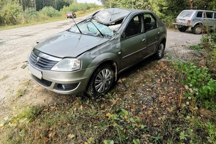На трассе в Костромской области «Логан» сбил лося