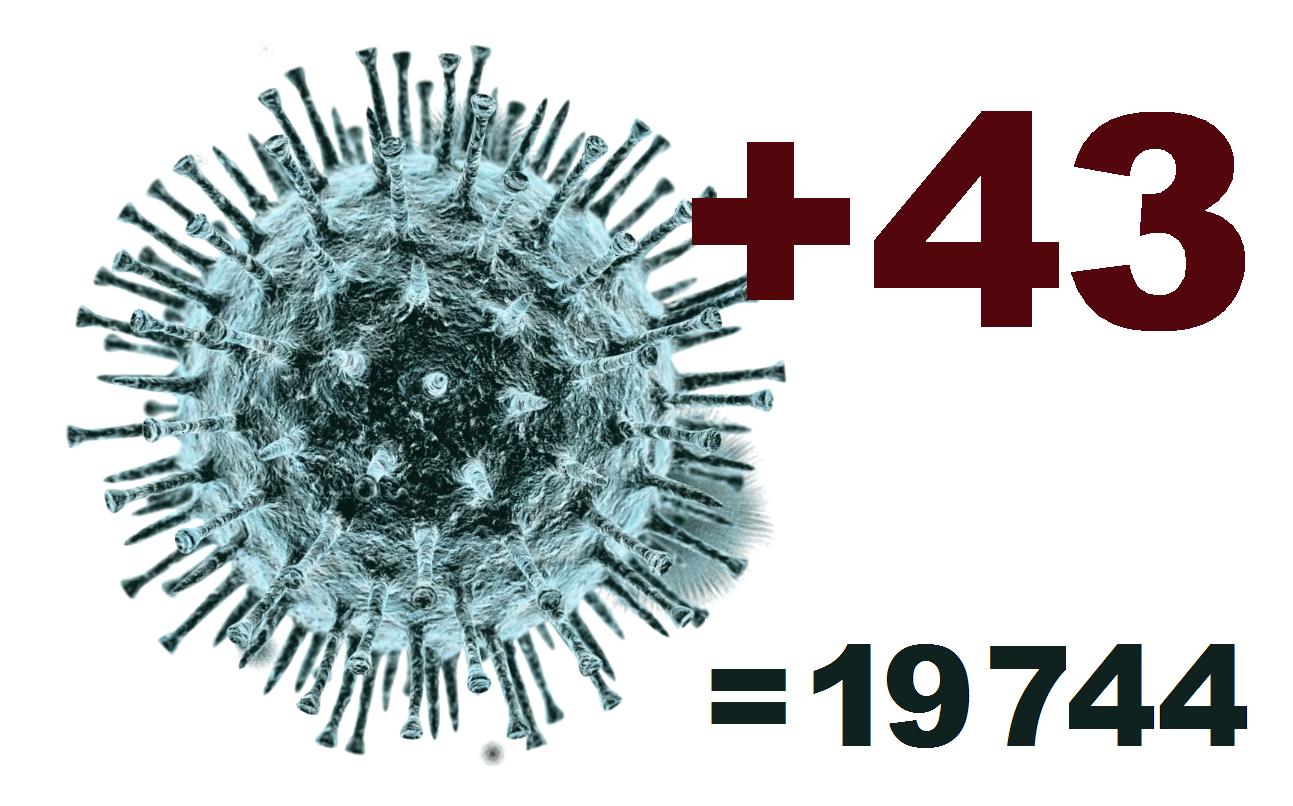 Коронавирус в Костромской области за сутки выявлен у 43 человек