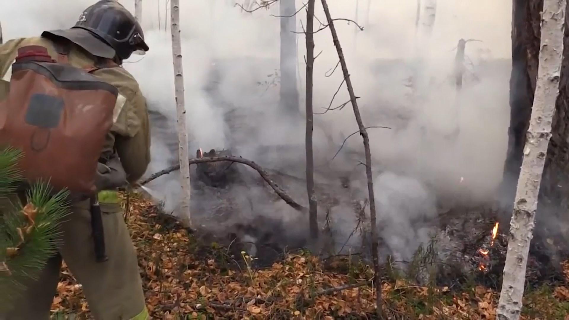 Для тушения пожаров костромские огнеборцы несли в лес воду на себе