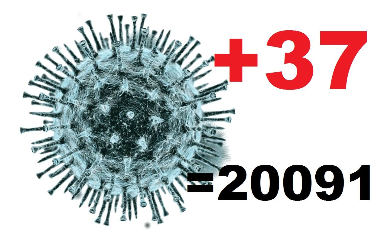 37 жителей Костромской области заболели коронавирусом за сутки