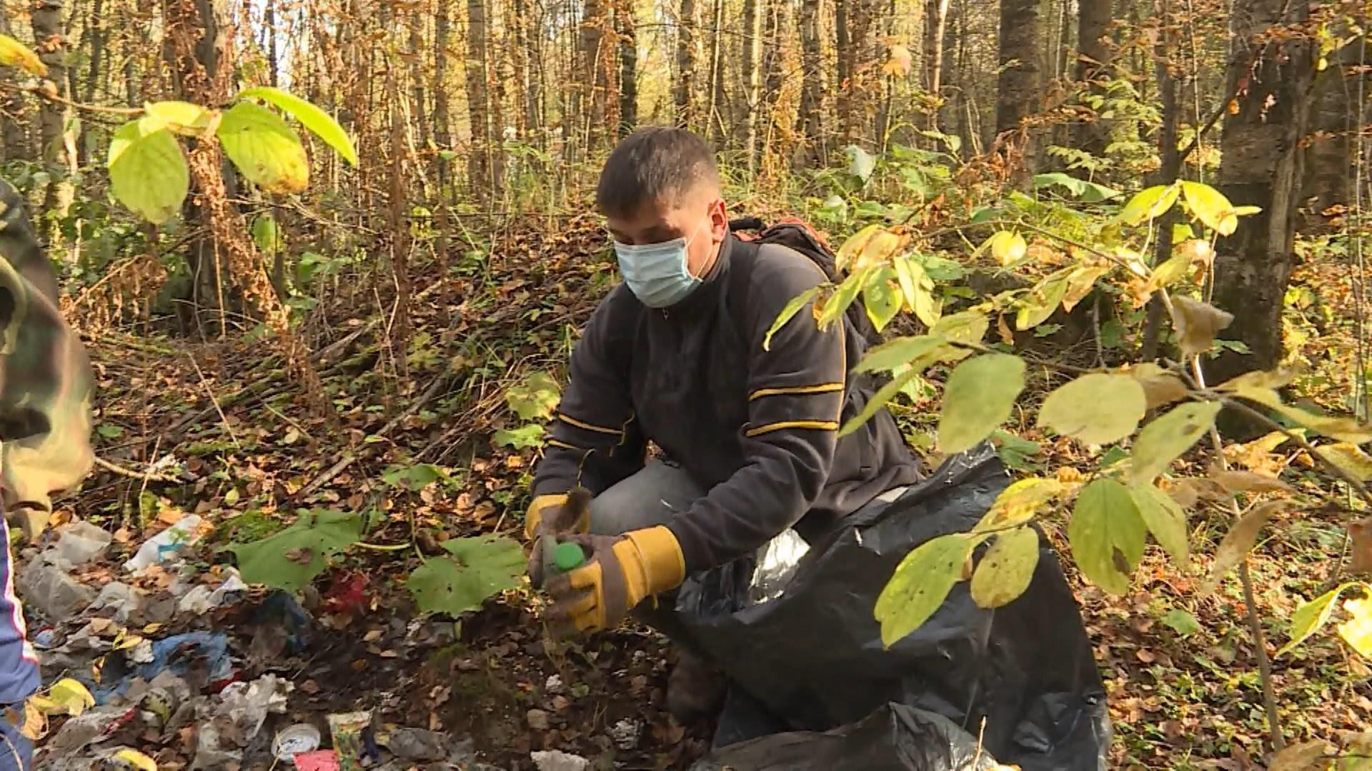 Костромская область присоединится к двум экологическим акциям