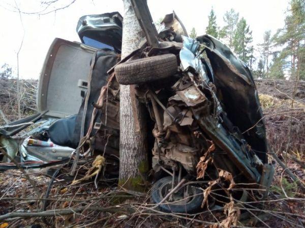 Водитель разорванного на части автомобиля в Костромской области даже не испугался