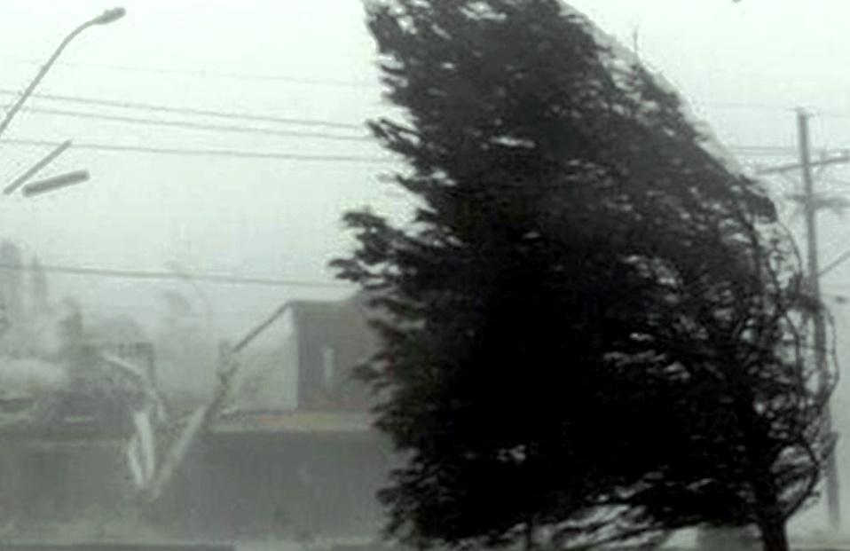 Дождь, гроза и сильный ветер ожидаются в Костромской области