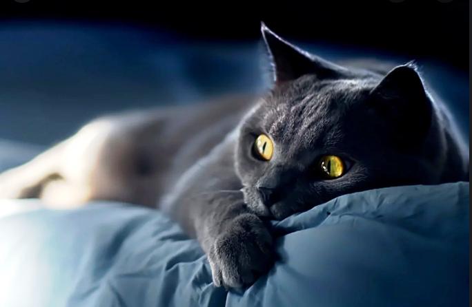 Костромичей ждут рекордно холодные ночи