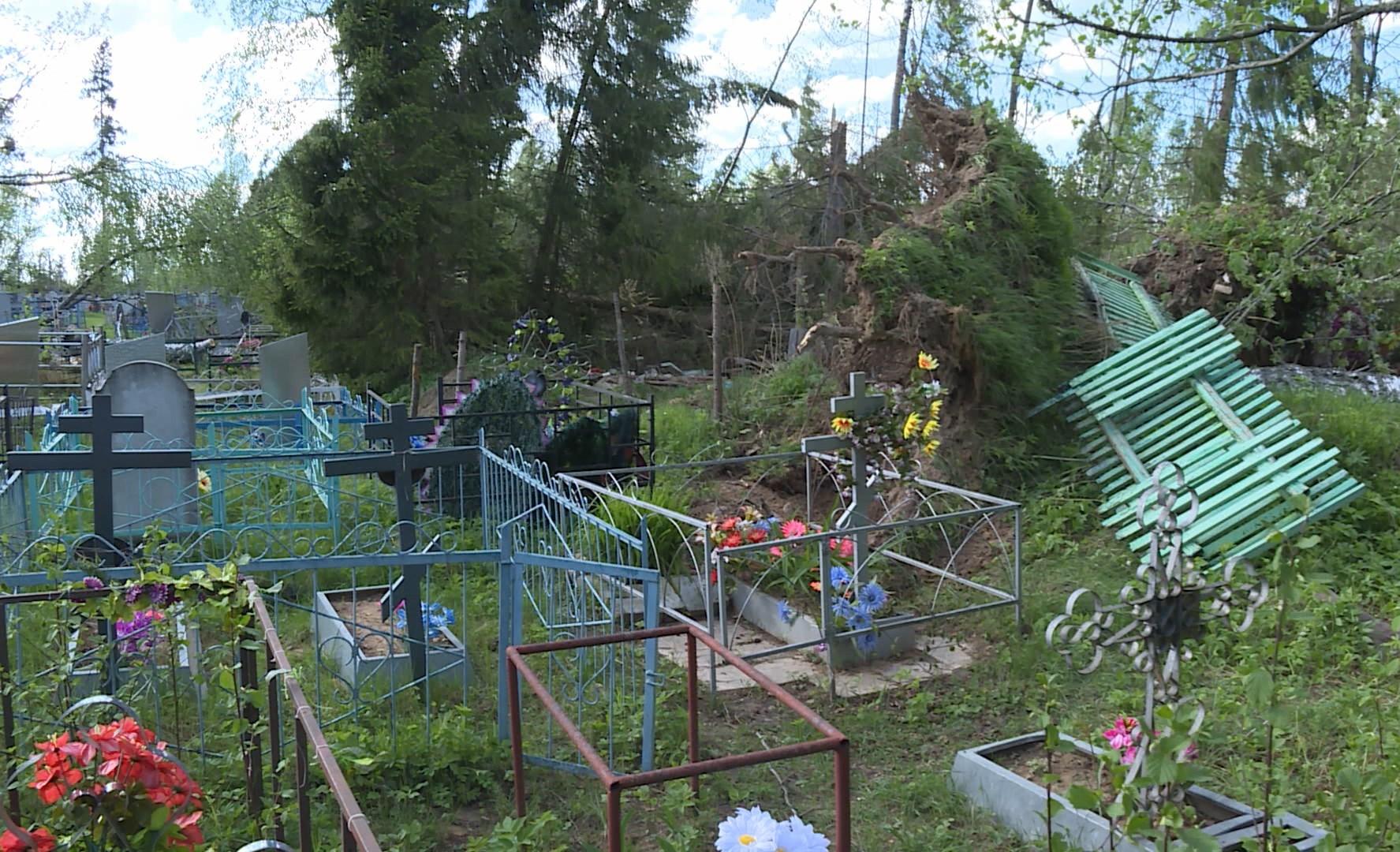 Кладбище в костромской глубинке привели в порядок после урагана