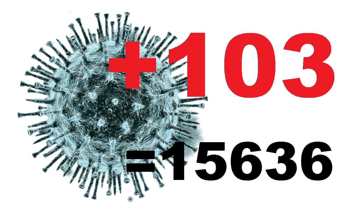 Коронавирус в Костромской области за сутки подтвержден у 103 человек