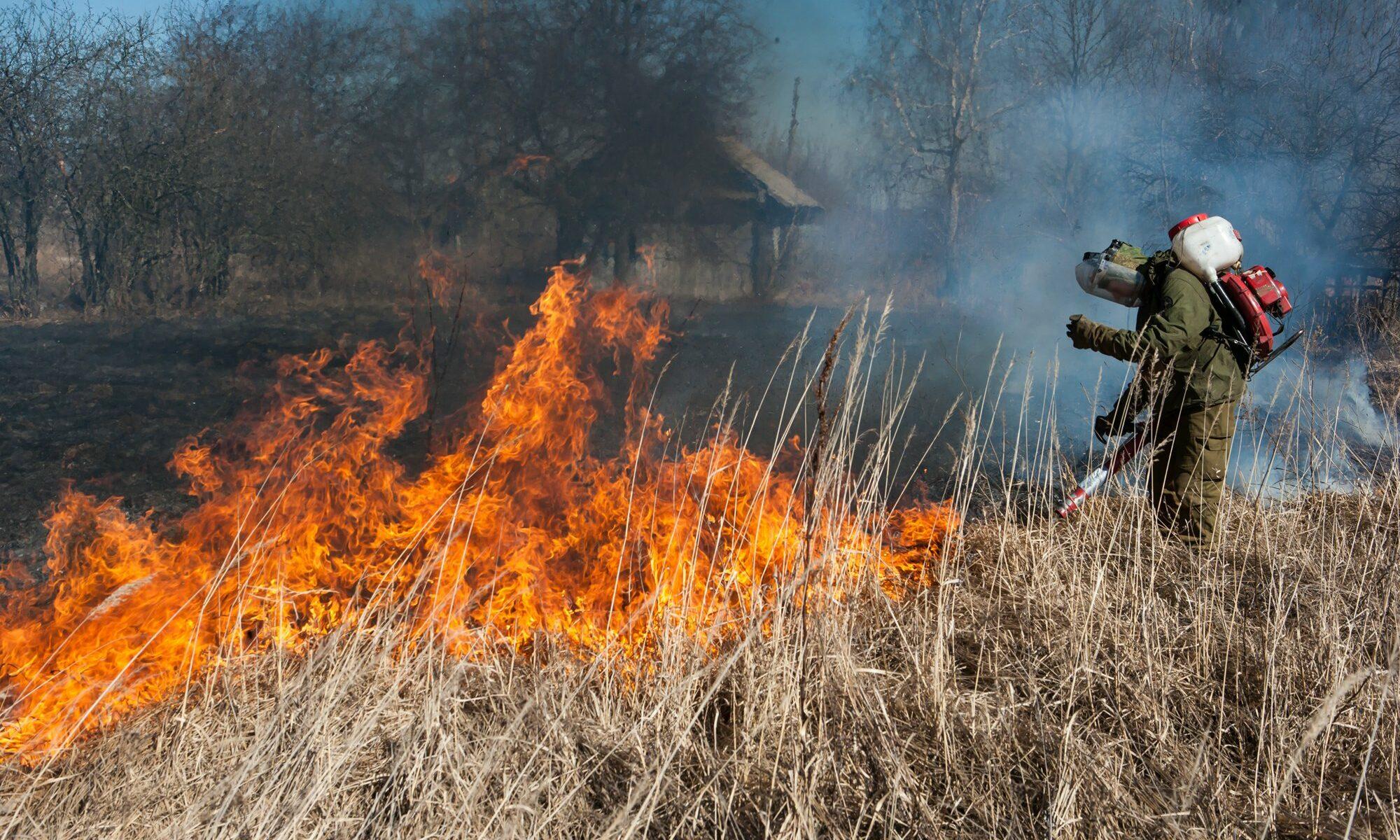 В Костроме за субботний день случилось три травяных пожара