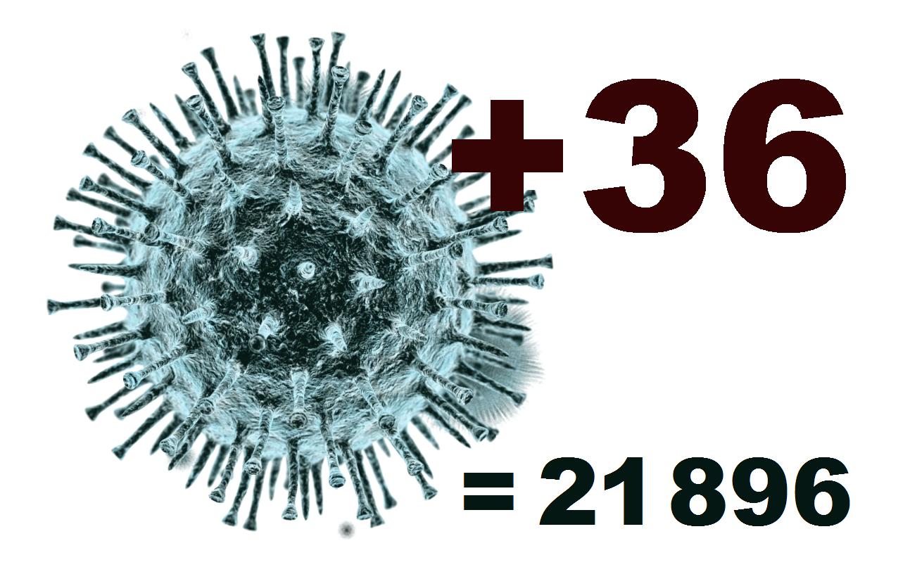 За сутки в Костромской области коронавирус диагностирован у 36 человек