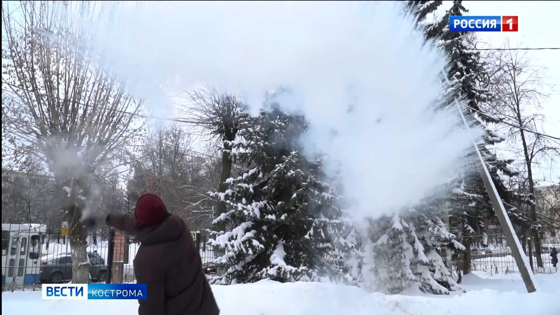 Костромская область прошла испытание на морозоустойчивость