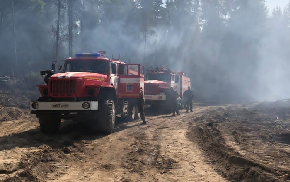 Тушение лесного пожара в Кологривском районе осложняет погода