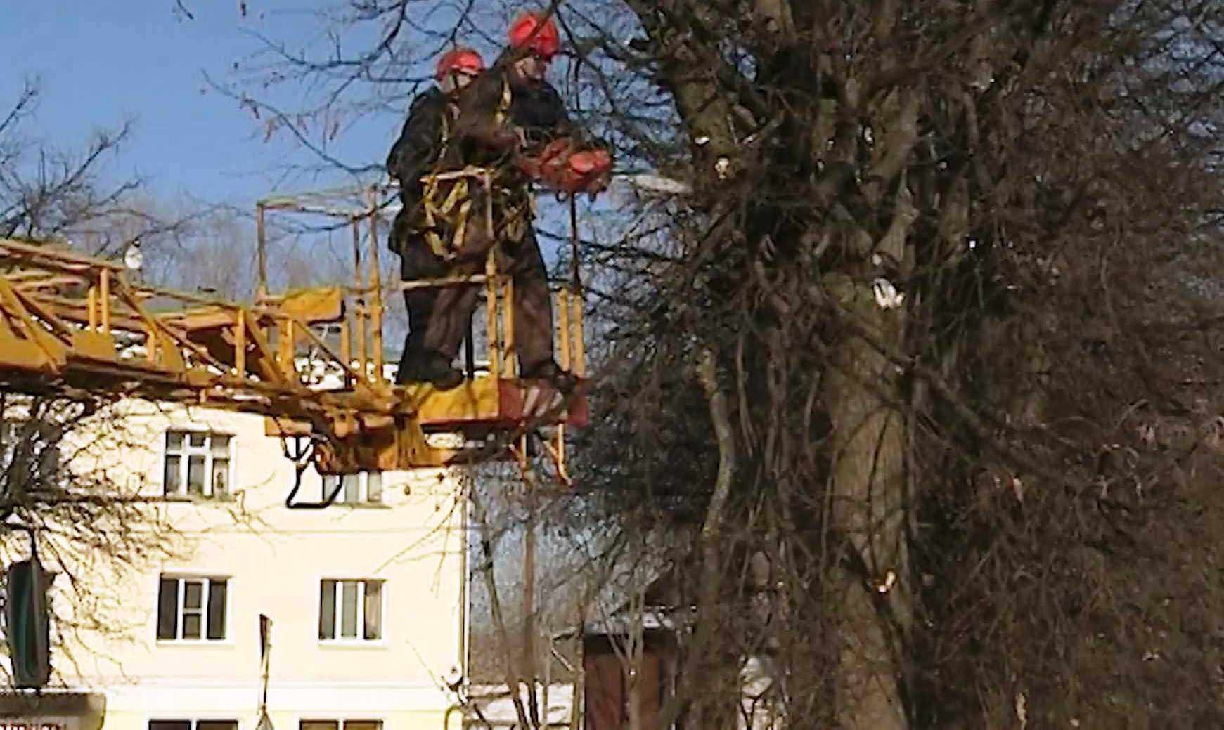 Полторы сотни домов в Костроме временно обесточат