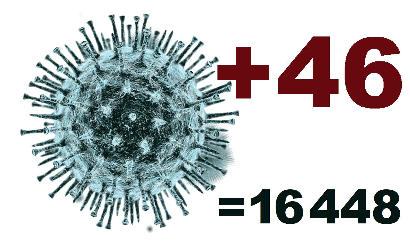 В Костромской области за сутки выявлено 46 новых случаев коронавируса