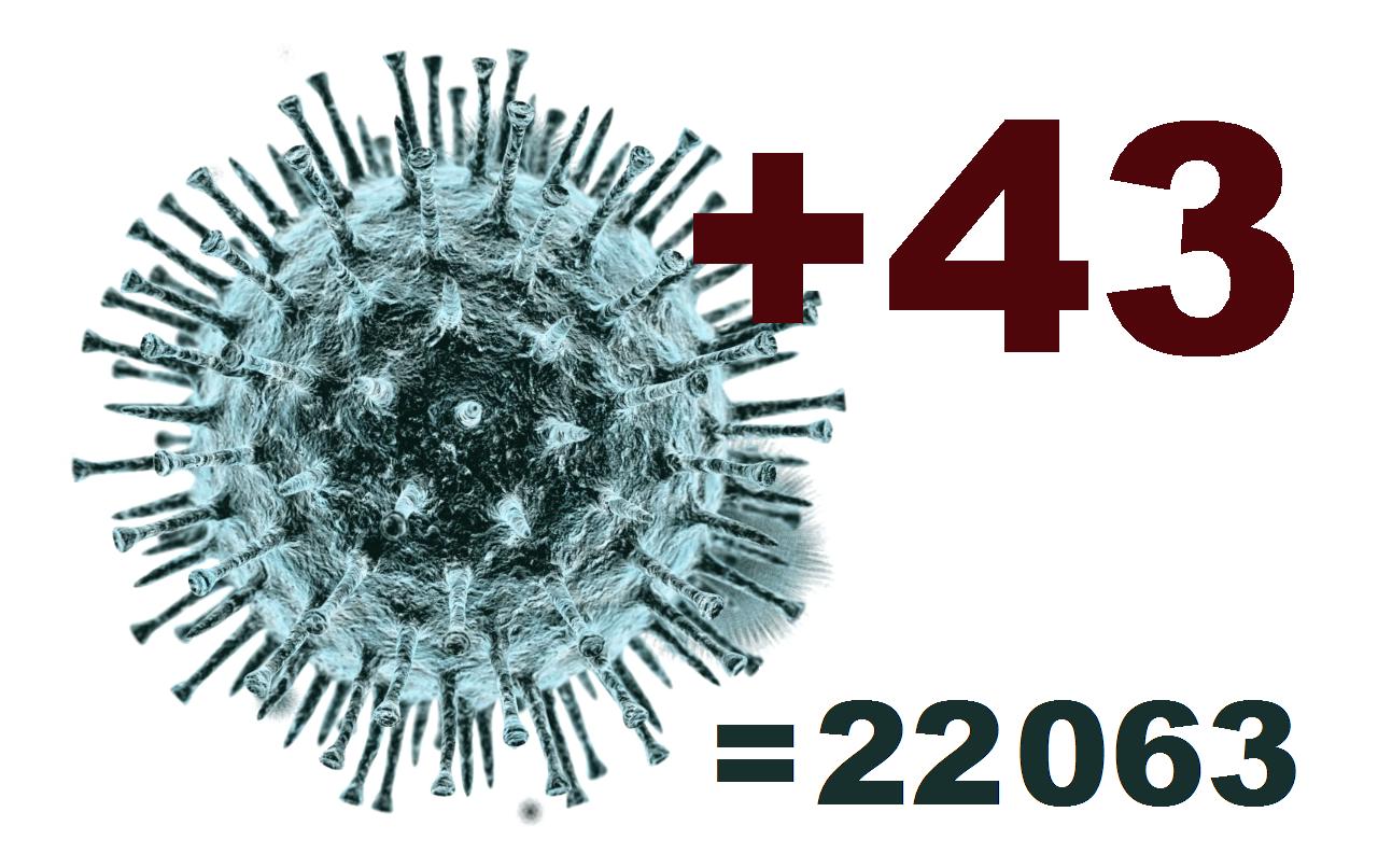 Коронавирус в Костромской области подтверждён у 43 человек за сутки