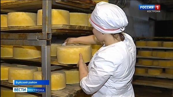 Костромичи могут поддержать гастрономические бренды региона на всероссийском конкурсе