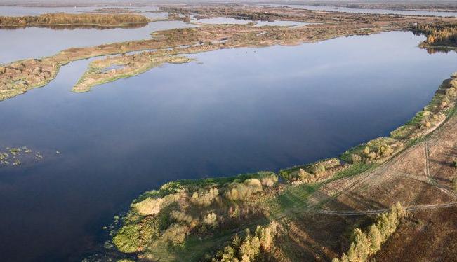 Русла двух костромских рек углубили и расчистили от гниющих остатков растений