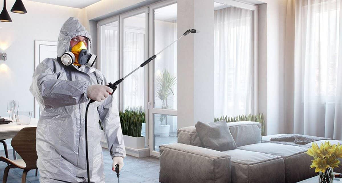 Дезинфектор обчистил квартиру жительницы костромского райцентра