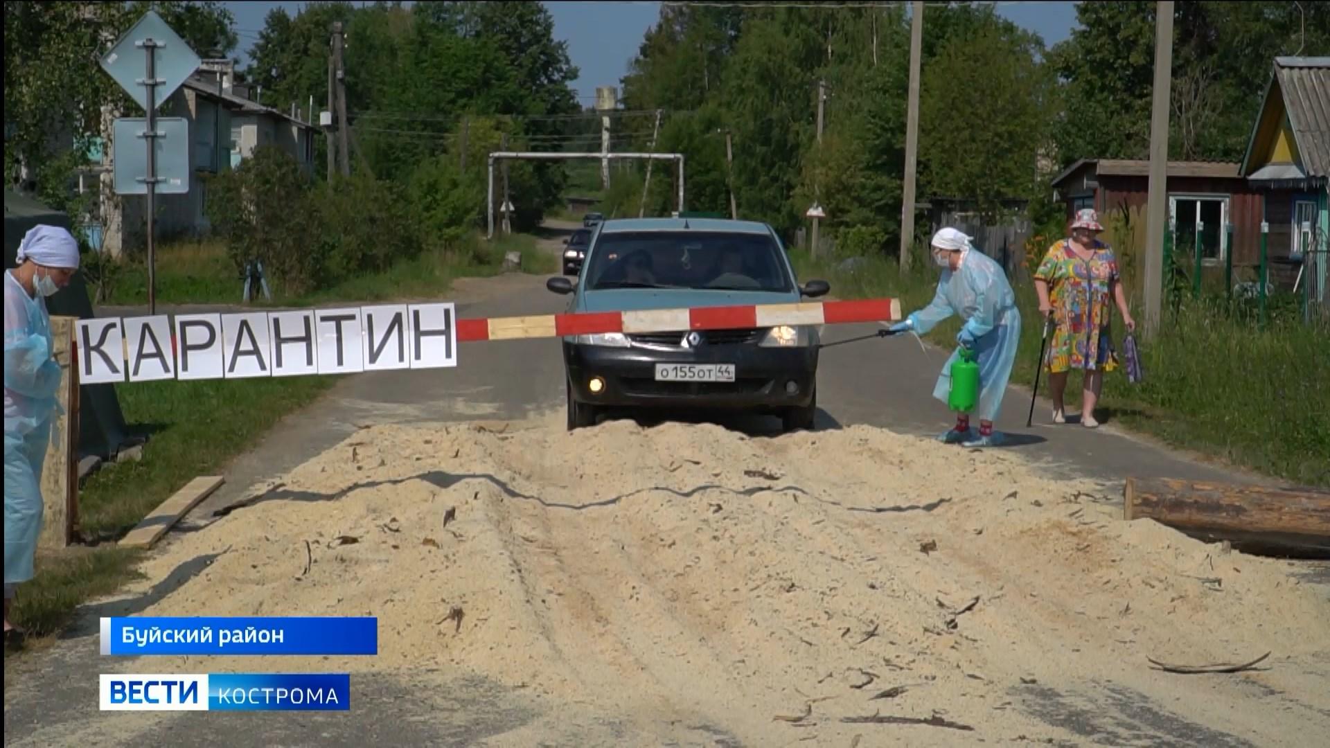 В четырех населенных пунктах Костромской области действует карантин из-за болезней животных