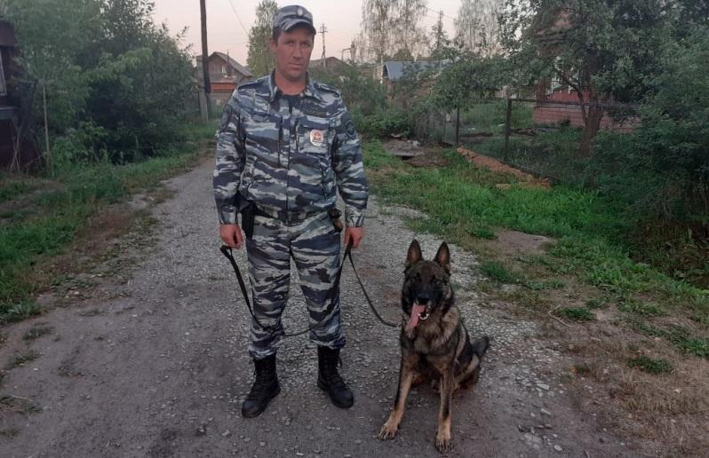 Служебный пёс Аякс раскрыл кражу из костромского магазина