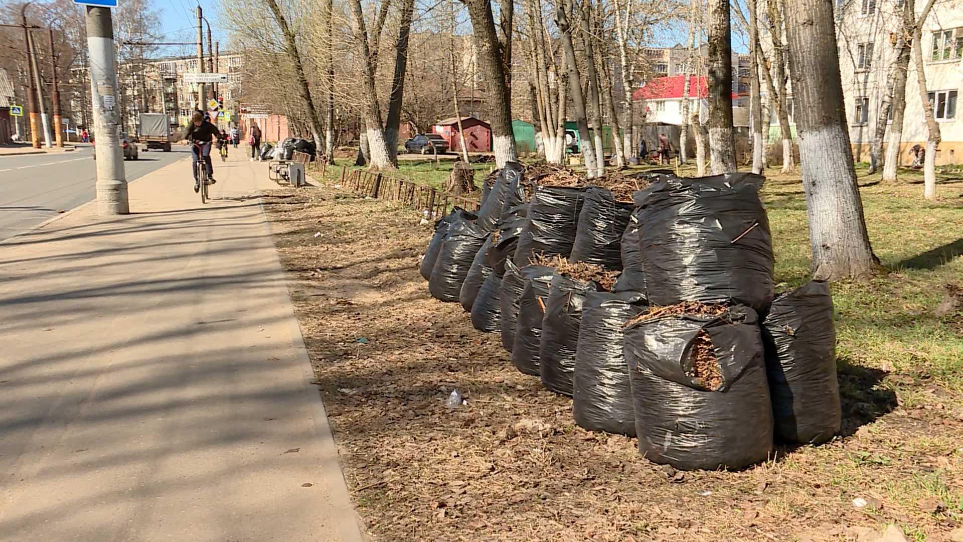 Власти Костромы поручились за вывоз мусора из дворов