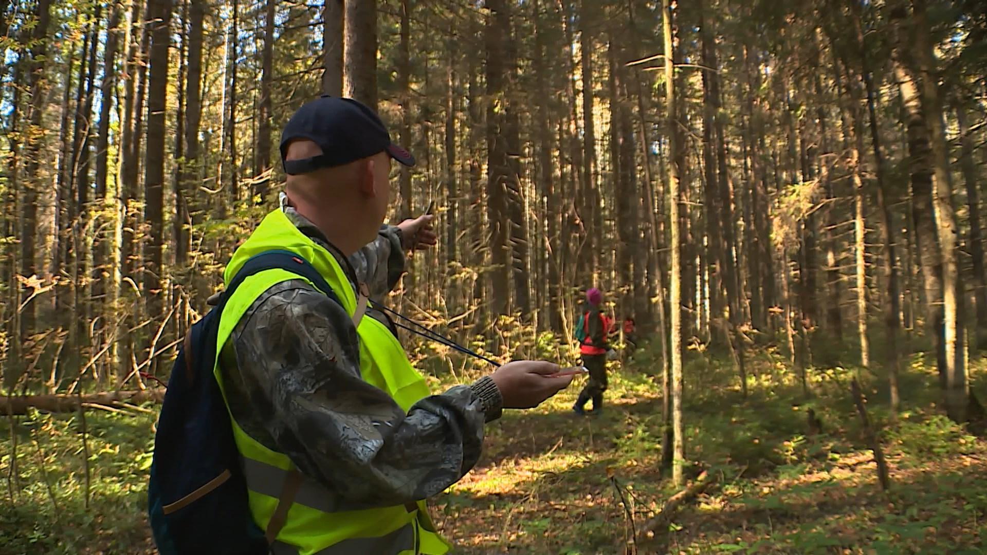 В костромских лесах найдены два мертвых грибника