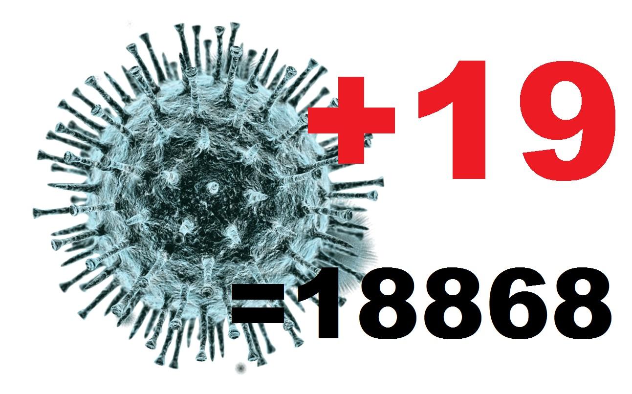 Коронавирусом за сутки заболели в Костромской области 19 человек